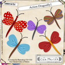Dragonfly 01 Action by Cida Merola