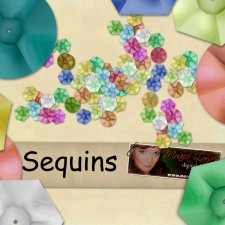 Sequins - action by Monica Larsen
