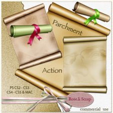 Action - Parchment by Rose.li