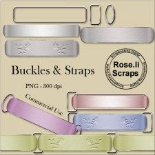 Buckles & Straps by Rose.li