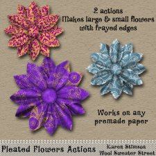 Pleated Flowers Actions by Karen Stimson