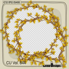 CU Vol 844 Frames by Lemur Designs