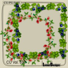 CU Vol 833 Frames by Lemur Designs