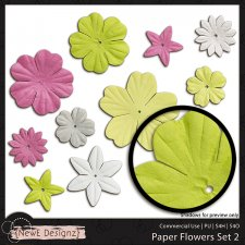 EXCLUSIVE Paper Flowers Set 2 by NewE Designz