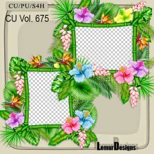 CU Vol 675 Frames by Lemur Designs