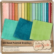 Colorful Hand Painted Overlays EXCLUSIVE by PapierStudio Silke