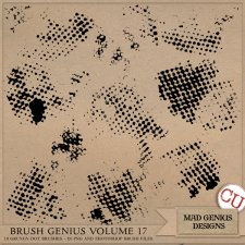 Brush Genius Volume Seventeen by Mad Genius Designs