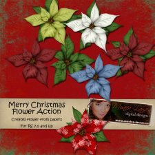 Christmas Flower Action by Monica Larsen