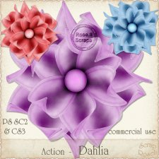 Action - Dahlia by Rose.li