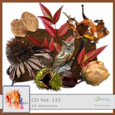 vol 132 Fall 2 Elements EXCLUSIVE bymurielle