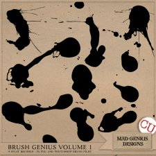 Brush Genius Volume One by Mad Genius Designs