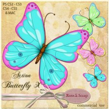 Action - Butterfly X by Rose.li