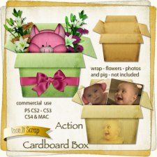 Action - Cardboard Box by Rose.li
