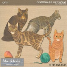 EXCLUSIVE Cats Watercolour by Silver Splashes