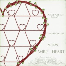 Action - Wire Heart by Rose.li