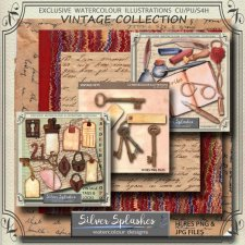 EXCLUSIVE Vintage Collection by Silver Splashes