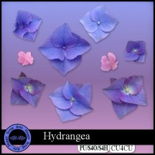 Hydrangea 1 CU4CU by Happy Scrap Arts