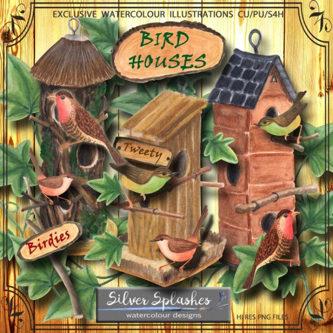 EXCLUSIVE Birdhouse 1 Watercolours by Silver Splashes