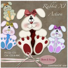 Action - Rabbit XI by Rose.li