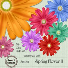 Action - Spring Flower II by Rose.li