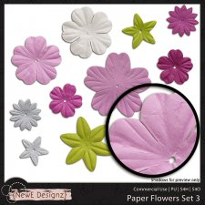 EXCLUSIVE Paper Flowers Set 3 by NewE Designz