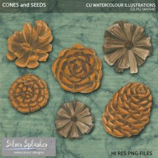 EXCLUSIVE Cones and Seeds Watercolour by Silver Splashes