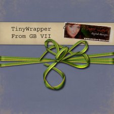 Tiny Wrapper - action by Monica Larsen