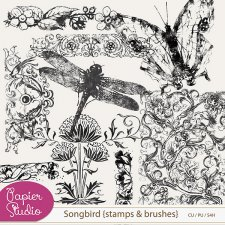 Songbird Stamps and Brushes EXCLUSIVE by PapierStudio Silke