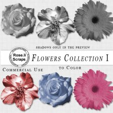 Flower Collection I by Rose.li