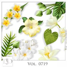 Vol. 0719 Nature Floral Mix by D's Design