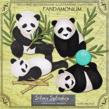EXCLUSIVE Pandamonium by Silver Splashes