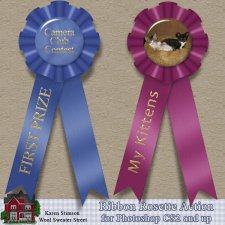 Ribbon Rosette Action by Karen Stimson