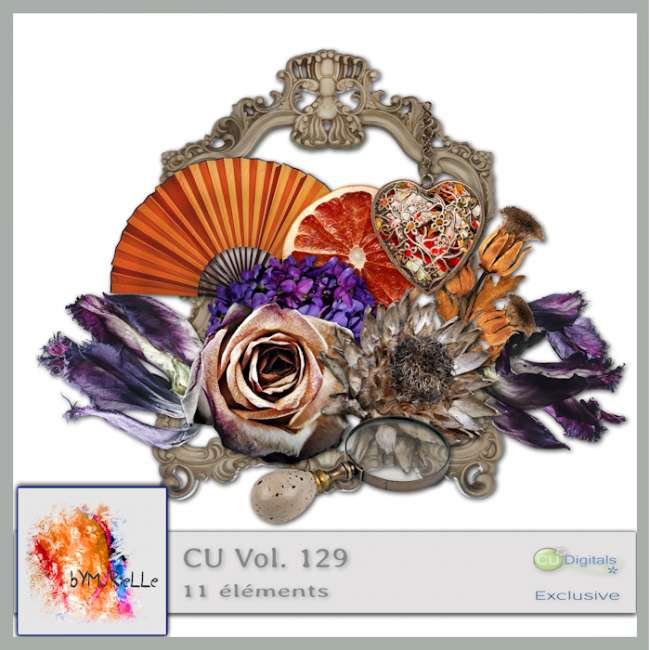 vol 129 Dried Flowers Elements EXCLUSIVE bymurielle