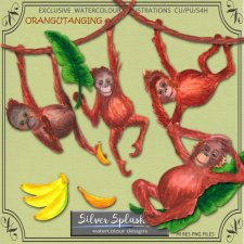 EXCLUSIVE Orangutanging by Silver Splashes