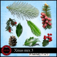 Christmas Mix 3 elements CU4CU by Happy Scrap Art