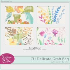 Delicate Painted Templates Grab Bag by PapierStudio Silke