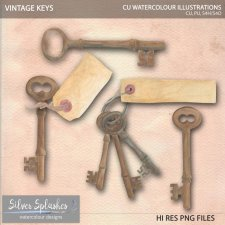 EXCLUSIVE Keys Watercolour by Silver Splashes