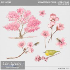 EXCLUSIVE Blossoms Watercolour by Silver Splashes