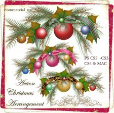 Action - Christmas Arrangement by Rose.li