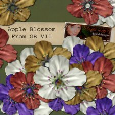 Apple Blossom - action by Monica Larsen