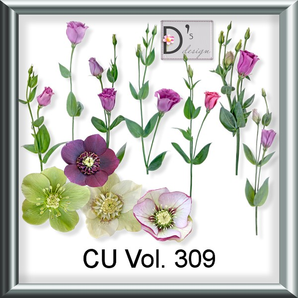 Vol. 309 Elements by Doudou Design