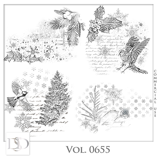 Vol. 0655 Winter Accents by D's Design