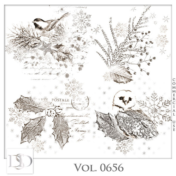 Vol. 0656 Winter Accents by D's Design