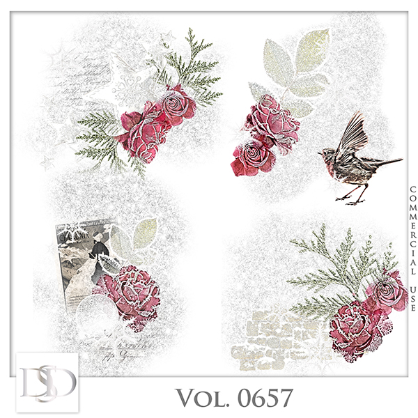 Vol. 0657 Winter Accents by D's Design