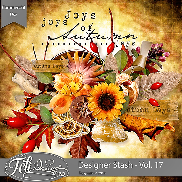 Designer Stash Vol 17 - CU by Feli Designs