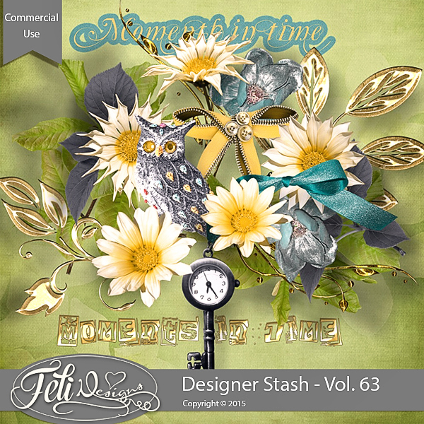 Designer Stash Vol 63 - CU by Feli Designs