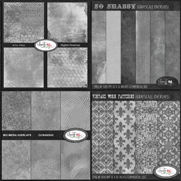 Shabby overlays bundle Lilmade Designs