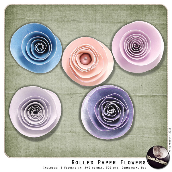 Rolled Paper Flowers by MoonDesigns