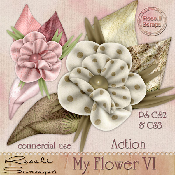 Action - My Flower VI by Rose.li