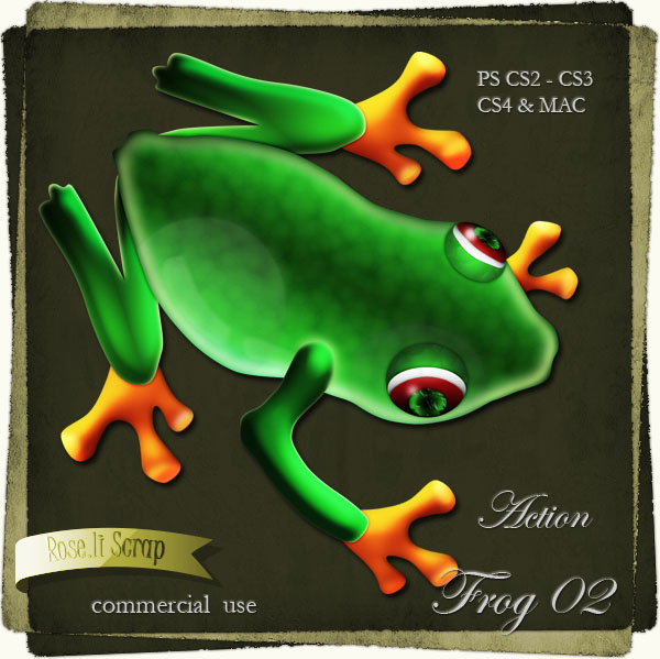 Action - Frog II by Rose.li
